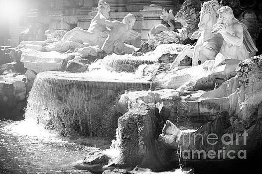 The Trevi fountain detail in Rome by Stefano Senise