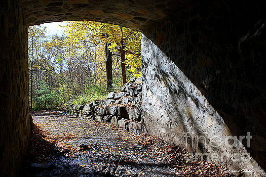 The Tunnel by Elfriede Fulda