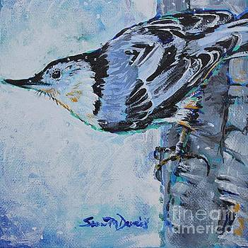 The Very Nervous Nuthatch by Susan Davies