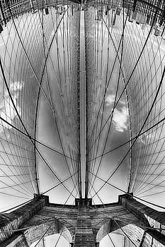 The View From Down Under by Miroslav Vrzala