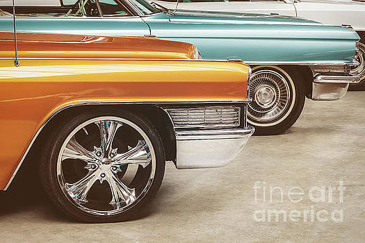 The Vintage Cadillacs by Martin Bergsma