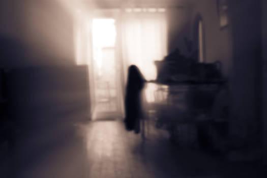 Stewart Scott - The visitor