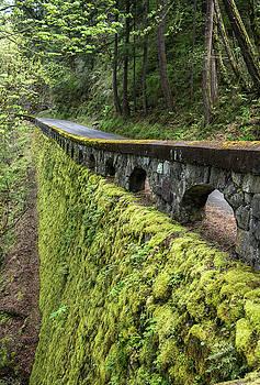 The Wall by Gordon Ripley