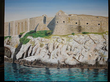 The Wall in Dubrovnik by Mario Lorentz