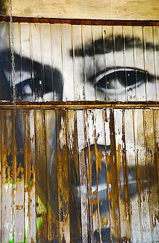 Skip Hunt - The Walls Have Eyes