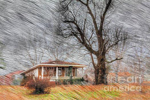 Larry Braun - The Warner House