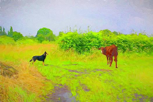 The Watcher by Susan Lafleur