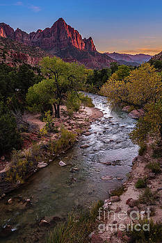 The Watchman at Dusk by Jamie Pham