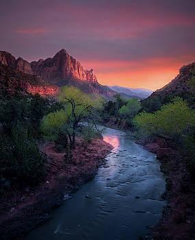 The Watchman // Zion National Park  by Nicholas Parker
