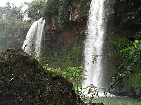 The Water Garden at Iguassu Falls by Paul Jessop