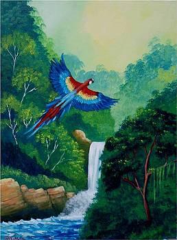 The waterfall bird by Jean Pierre Bergoeing
