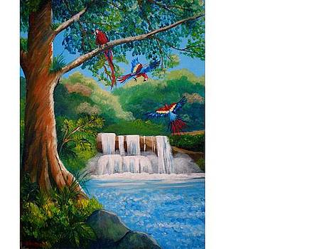 The waterfall by Jean Pierre Bergoeing