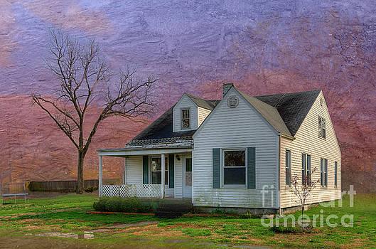 Larry Braun - The Watkins House