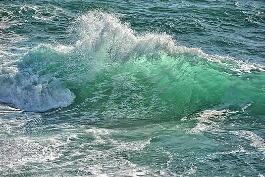 The Wave by Joachim G Pinkawa