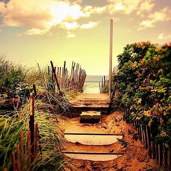 The Way In by Daniel Berman