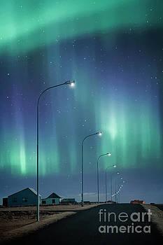 The Way To Light by Evelina Kremsdorf