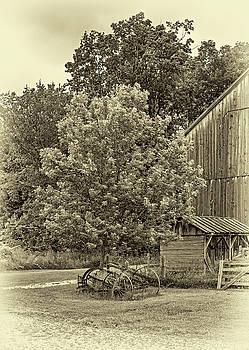 Steve Harrington - The Way We Were - Behind The Barn - Sepia