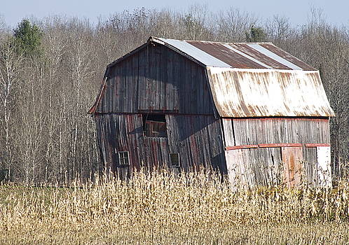 The weathered barn by Danielle Allard
