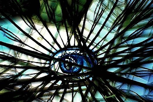 Marysue Ryan - The Web