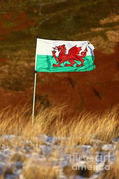 James Brunker - The Welsh Dragon Flies with Pride