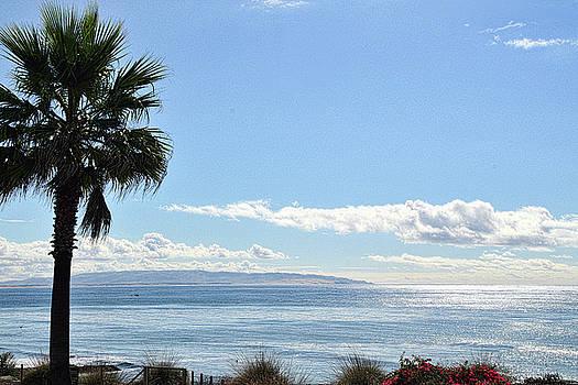 The West Coast Scene by Lorrie Morrison