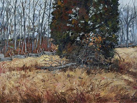 The Wheatfield - Gettysburg Pennsylvania by Mark Maritato