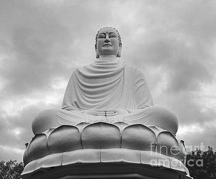 The White Buddha by Jim Chamberlain