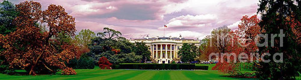 The White House  by Tom Jelen