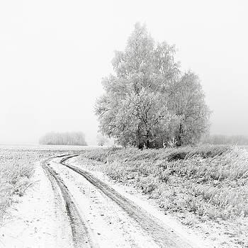 The White Silence. Horytsya, 2014. by Andriy Maykovskyi