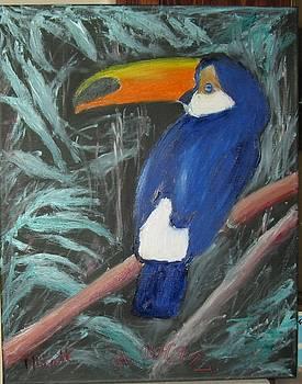 The Wild Toucan by M Bhatt