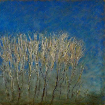 The Willows on St. Patty's Day by Wendie Thompson