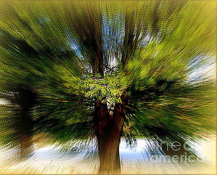 The Wind by Elfriede Fulda