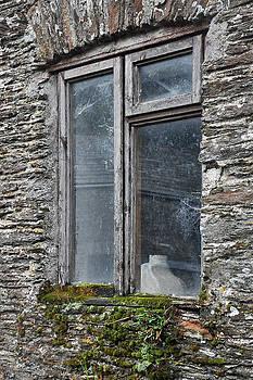 Andrew Wilson - The Window