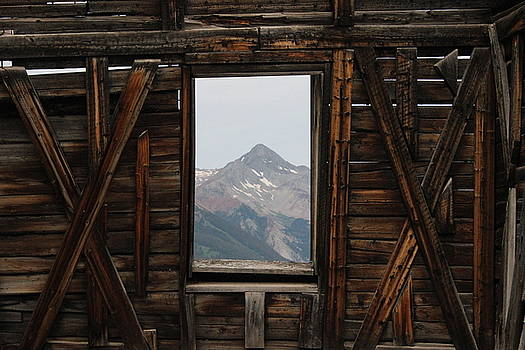 The Window by Craig Butler
