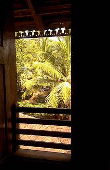 The Window by Farah Faizal