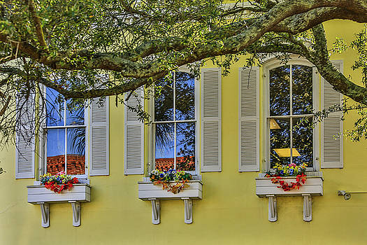 Paula Porterfield-Izzo - The Windows of Amelia Island