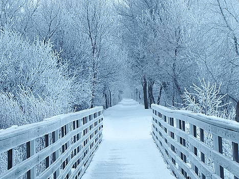 The Winter Bridge by Lori Frisch