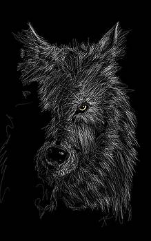 The wolf in the dark by Darren Cannell