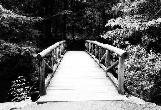 The Wooden Bridge in Black and White by Trina Ansel