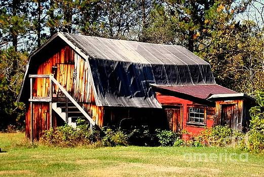 The Woodshed by Jessica Wood