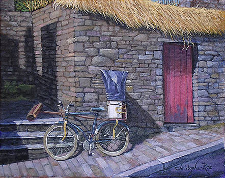 The Workman's Bicycle by Christopher Roe