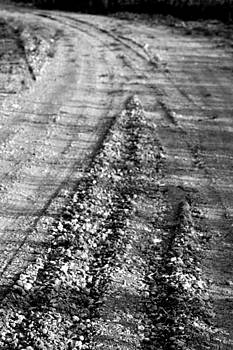 The Worn Out Road by Mariajesus Soula