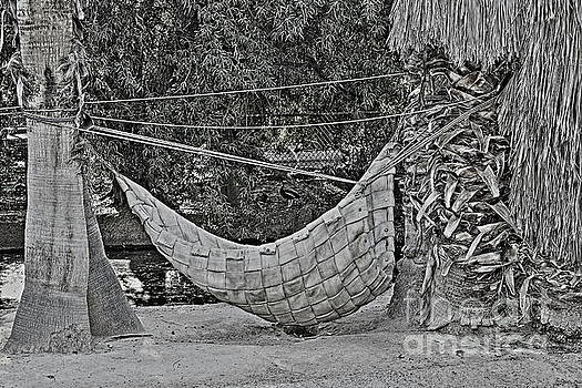 The Woven Hammock by Natalie Ortiz