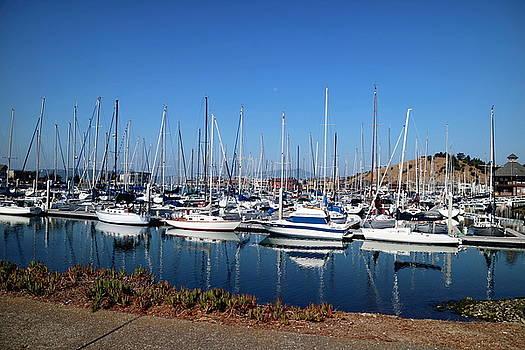 The Yacht Club Marina Point Richmond, CA by Joyce Dickens