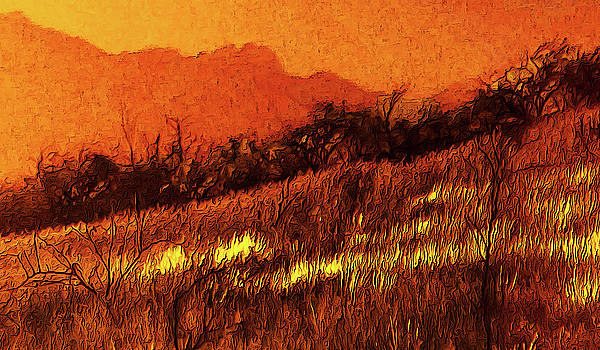 The Yellow Grass by Chuck Mountain