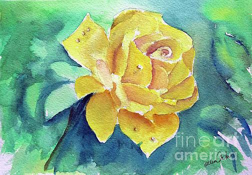 The Yellow Rose by Allison Ashton