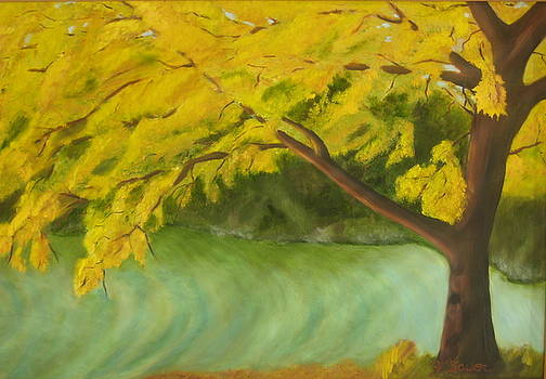 The Yellow Tree by Julie Sauer