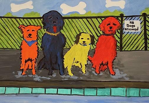 Their Pool Is Great by Nancy Henkel Schulte
