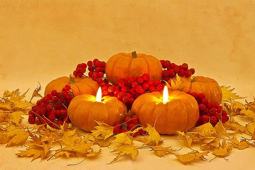 Sandra Foster - Then We Had Pumpkin Pie