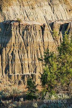Bob Phillips - Theodore Roosevelt National Park Landscape Four